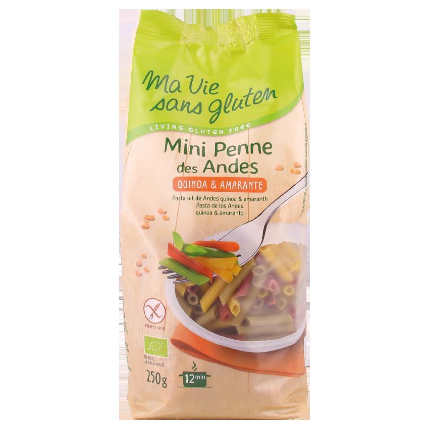 mini-penne-andes-sans-gluten