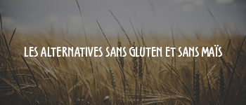 alternatives_sans_gluten