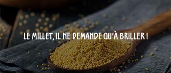 millet_sans_gluten